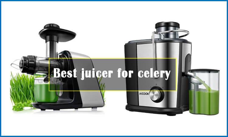 9 Best Juicer for Celery
