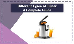 Different Types Of Juicer
