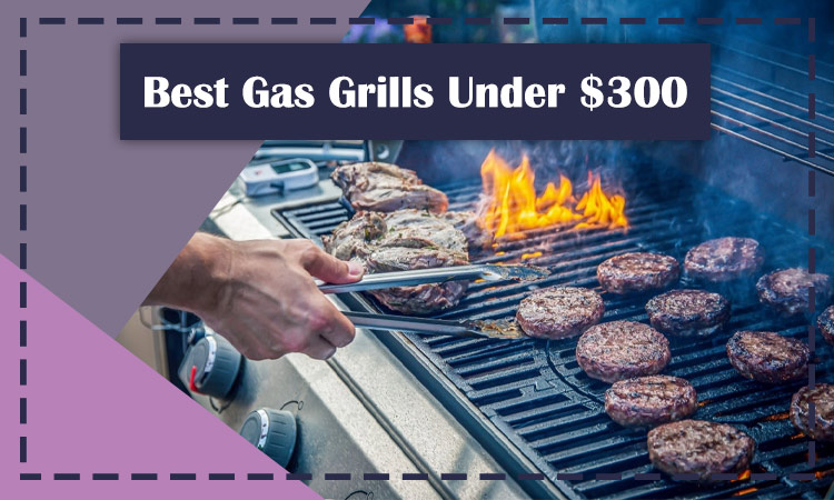 10 Best Gas Grills Under $300 [Buying Guide]